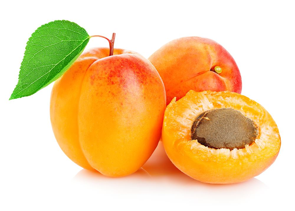 How Many Apricots Should Be Given To Dogs