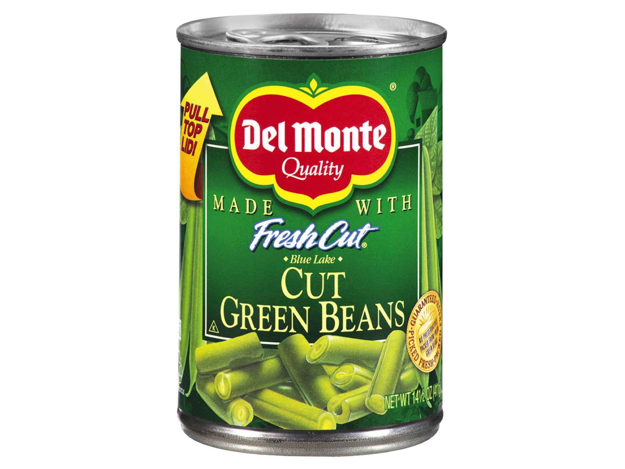 Can Dogs Have Canned Green Beans