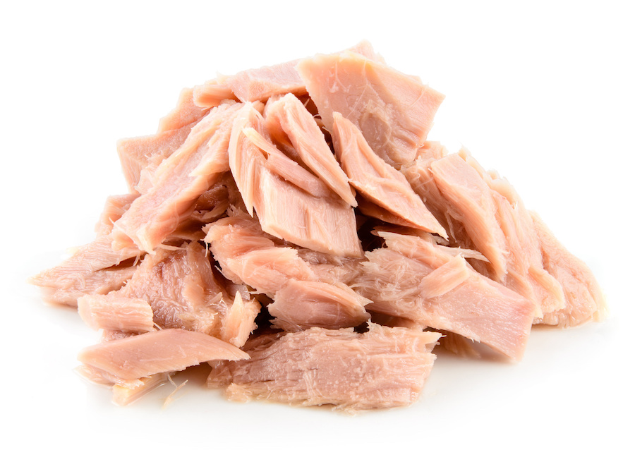 Can Dogs Eat Tuna Every day