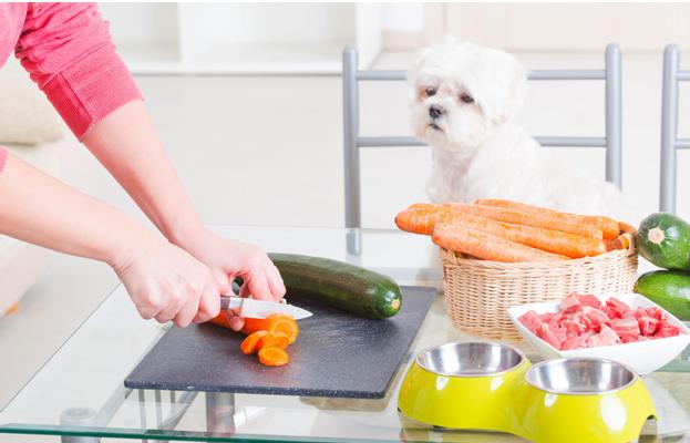 Preparing Homemade Fresh Dog Food